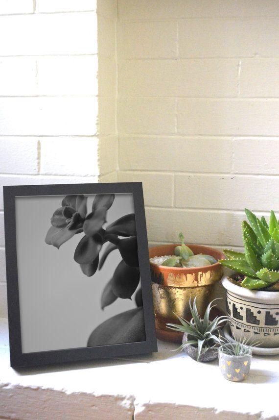 Zen Home Decor Succulent Art Print Black and by BlackandBright