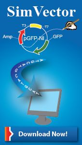 DNA analysis & Plasmid map drawing software to draw vector