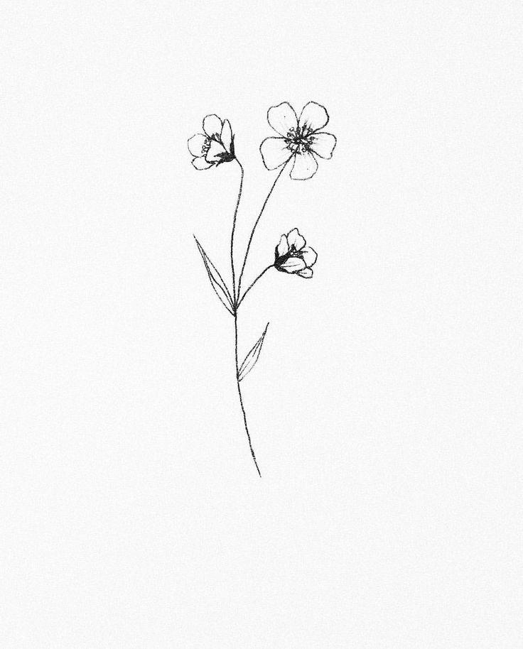 Wild Flower 2 Small Flower Drawings Wildflower Tattoo Small Flower Tattoos