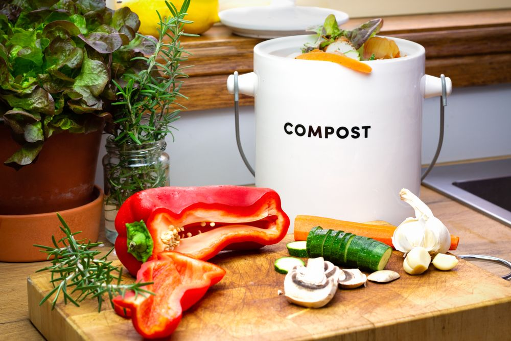 Too Good To Go : le guide anti-gaspi | Composteur, Anti gaspillage  alimentaire, Gaspillage alimentaire