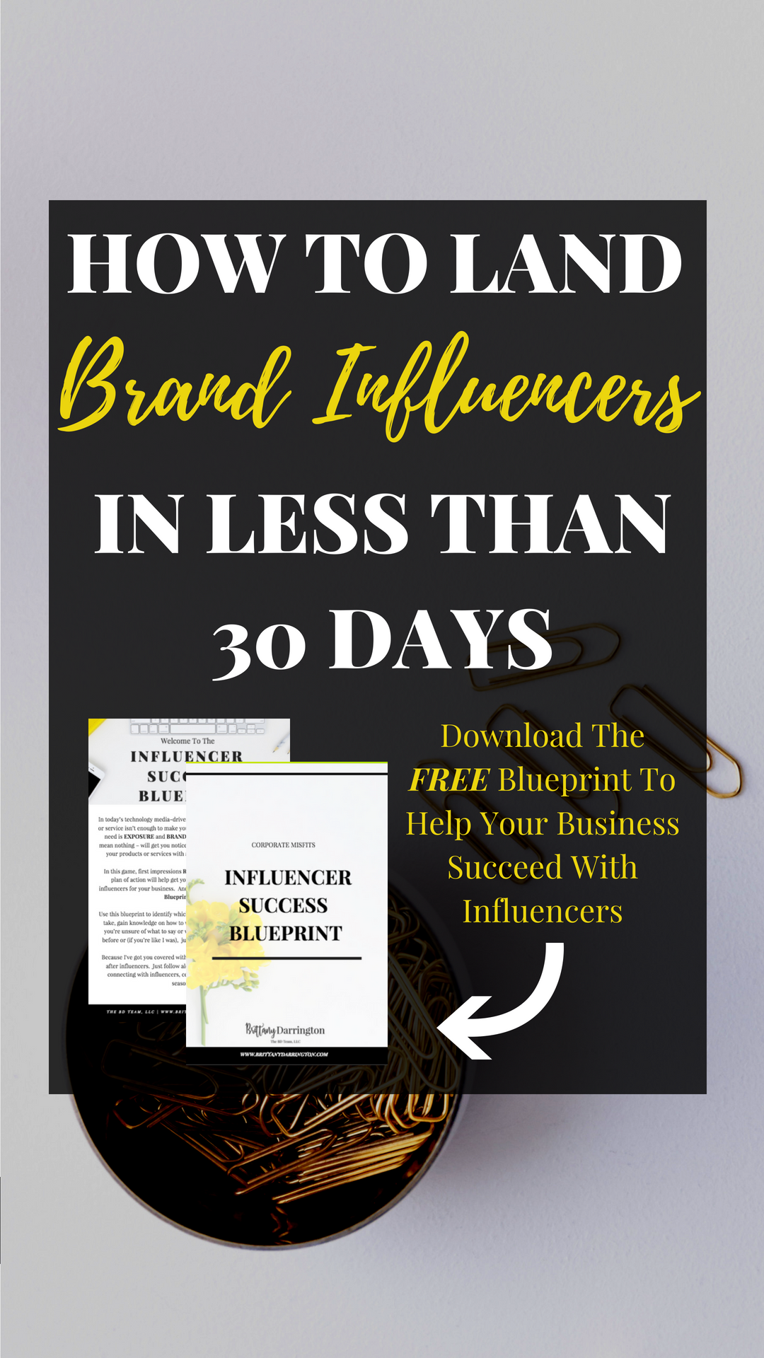 Learn How To Build A Wildly Profitable Brand Through The