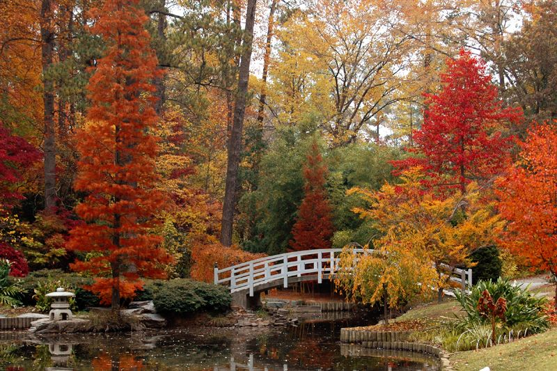 Duke Gardens in the Fall by on