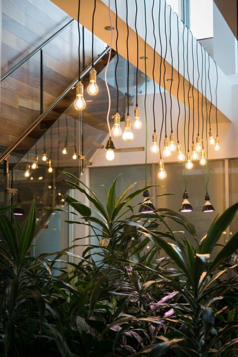 10 Stylish Indoor Plant Displays Led Grow Lights Grow Lights Led Grow Lights Indoor Plants