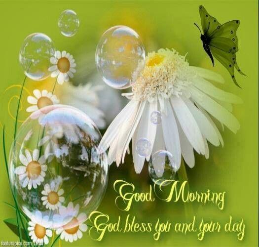 Good Morning quotes quote morning good morning morning quotes good morning quotes