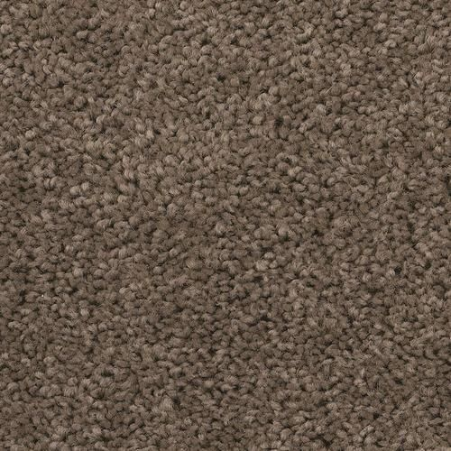 Shaw Abigail Plush Carpet 12 Ft Wide At Menards 2 Bedrooms Plush Carpet Carpet Sale Affordable Carpet