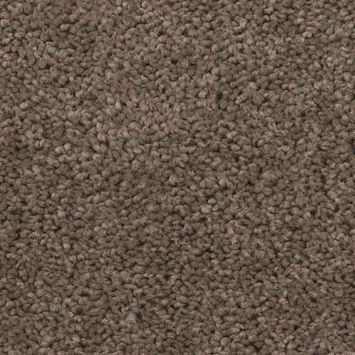 Shaw Abigail Plush Carpet 12 Ft Wide At Menards 2 Bedrooms Plush Carpet Carpet Sale Affordable Carpet
