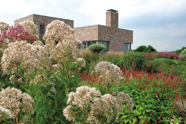 Piet Oudolf's New Garden Book,  Plantings  is part of Winter garden Architecture - The Dutch landscape designer on his new book and an essential but often overlooked ingredient in gardening—chance