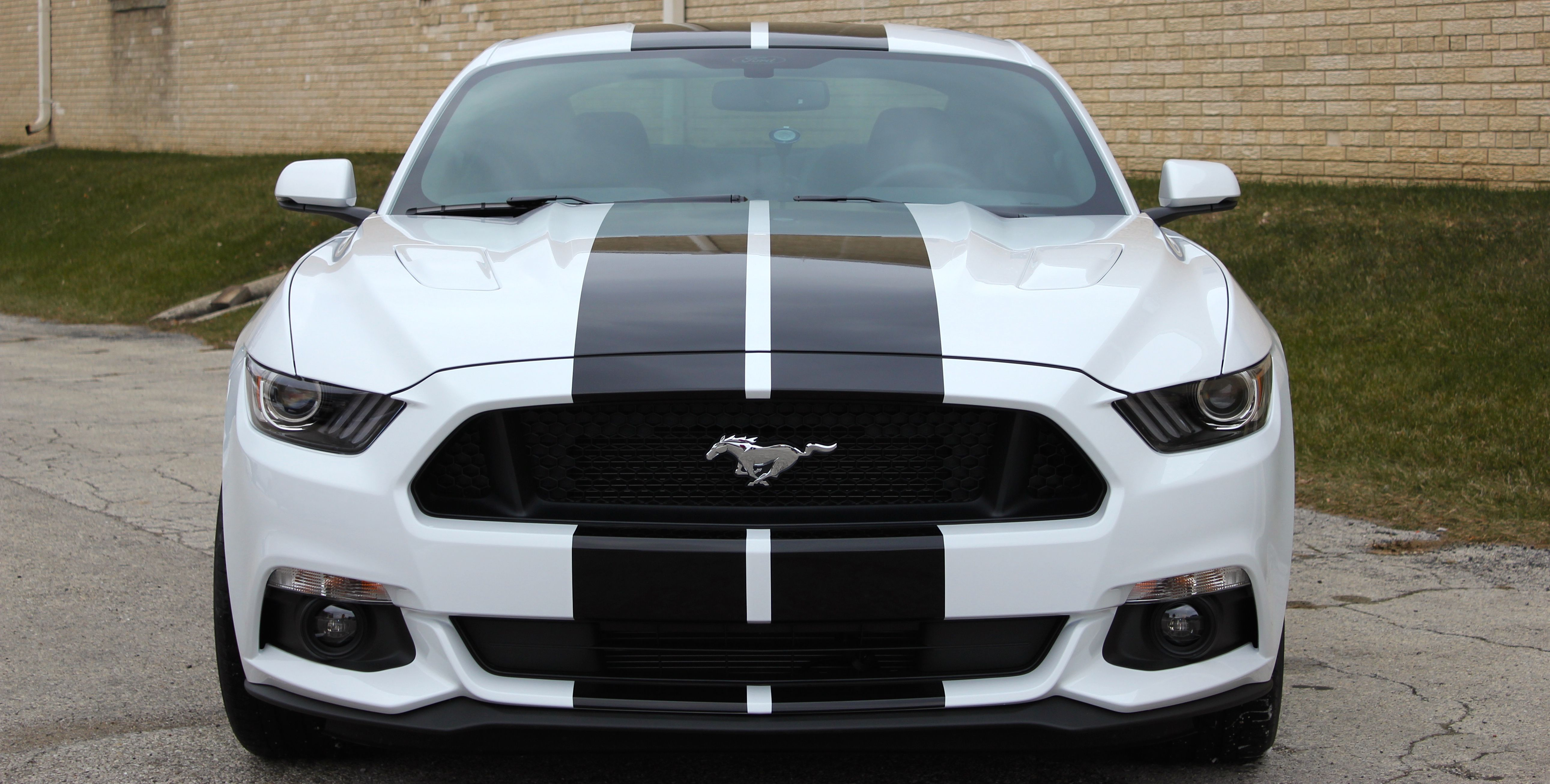 White mustang gt w black stripes front view
