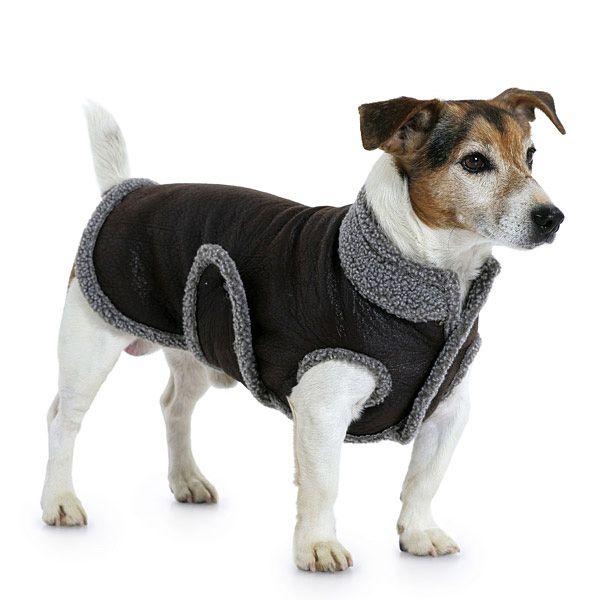 Cappottino per cani, Burda 7752 | vestiti fai da te | Pinterest
