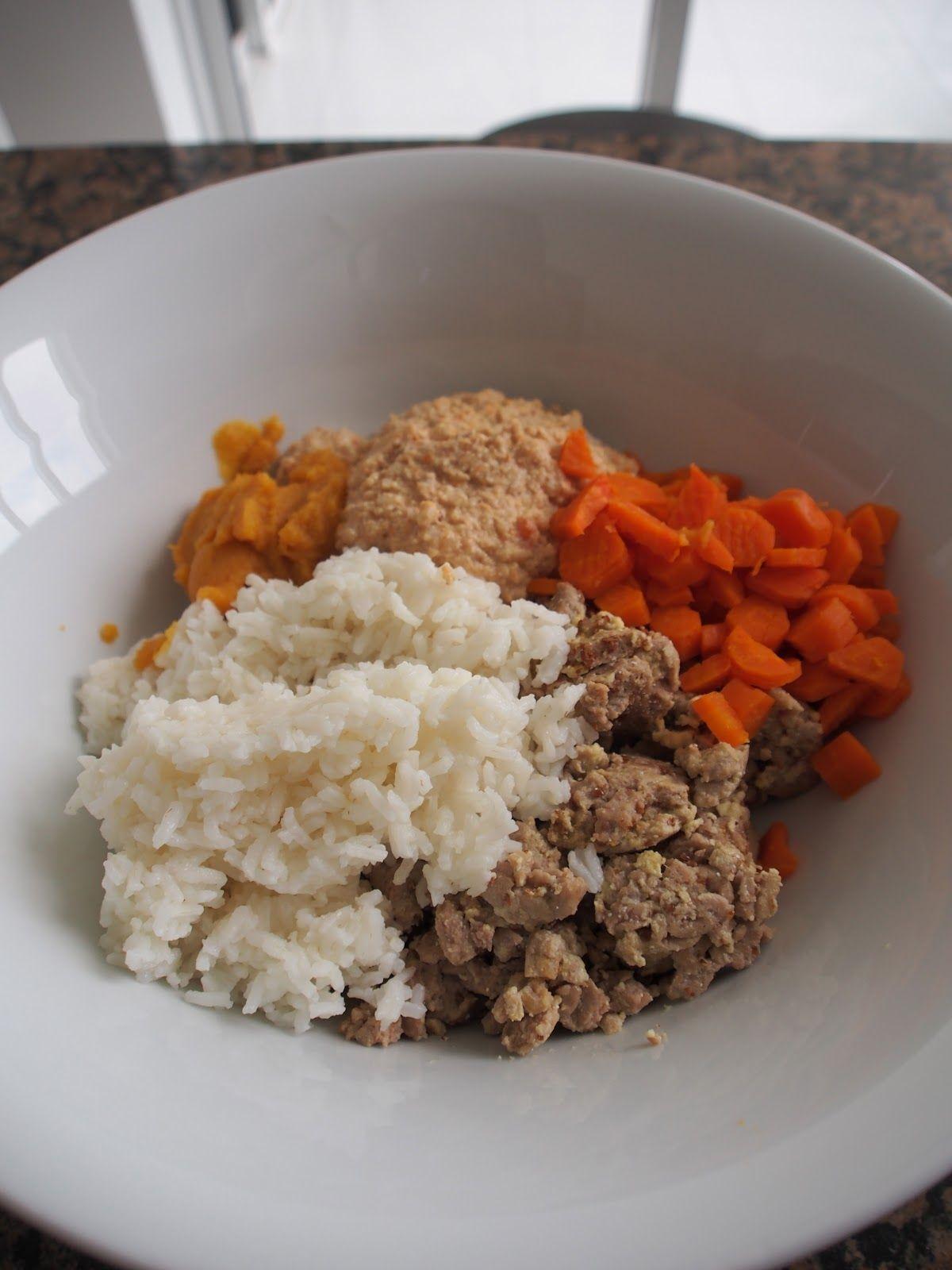 Homemade Dog Food Recipe Dog Food Recipes Homemade Dog Food
