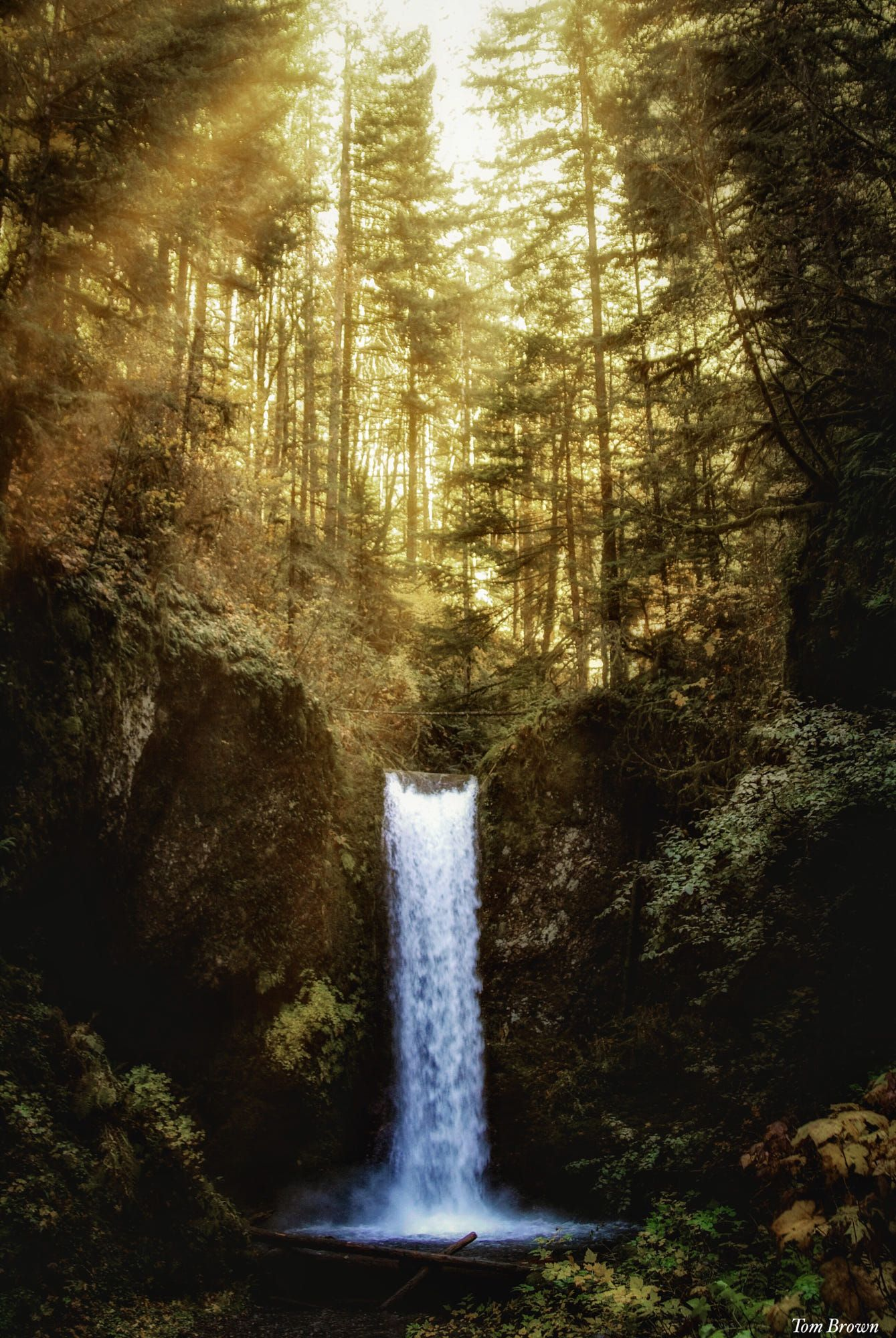 Waterfall By Tom Brown Cool Pictures Of Nature Scenic Waterfall Waterfall