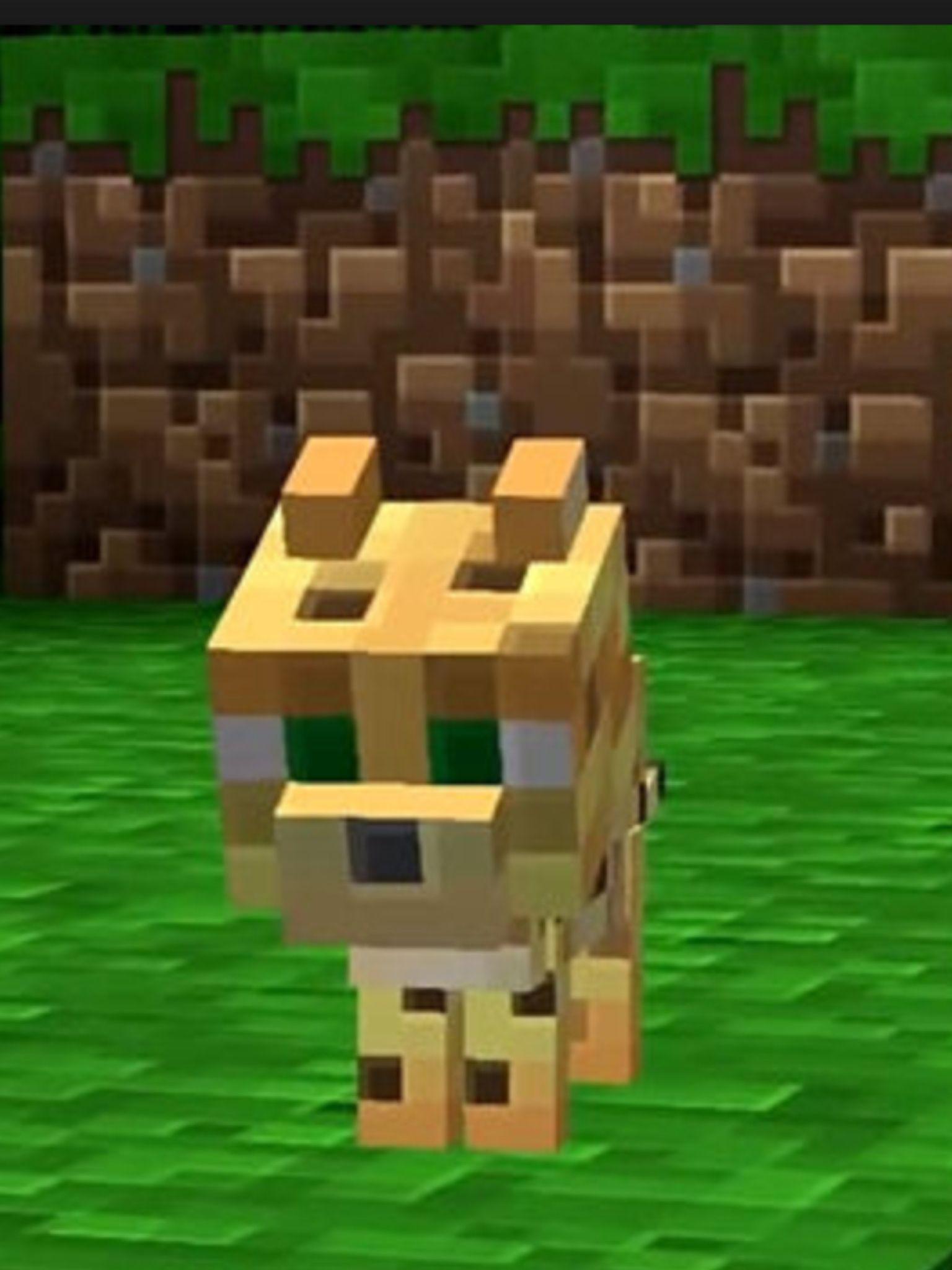 I Love This Cute Little Ocelot Minecraft Minecraft
