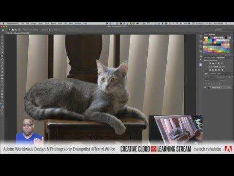 Introduction to Adobe Photoshop CC - Pt 5 - Adobe Camera RAW Filter