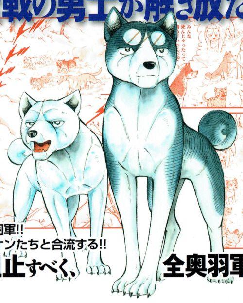 Ginga Densetsu Weed Opening: Ginga Densetsu Weed Manga - Google Search