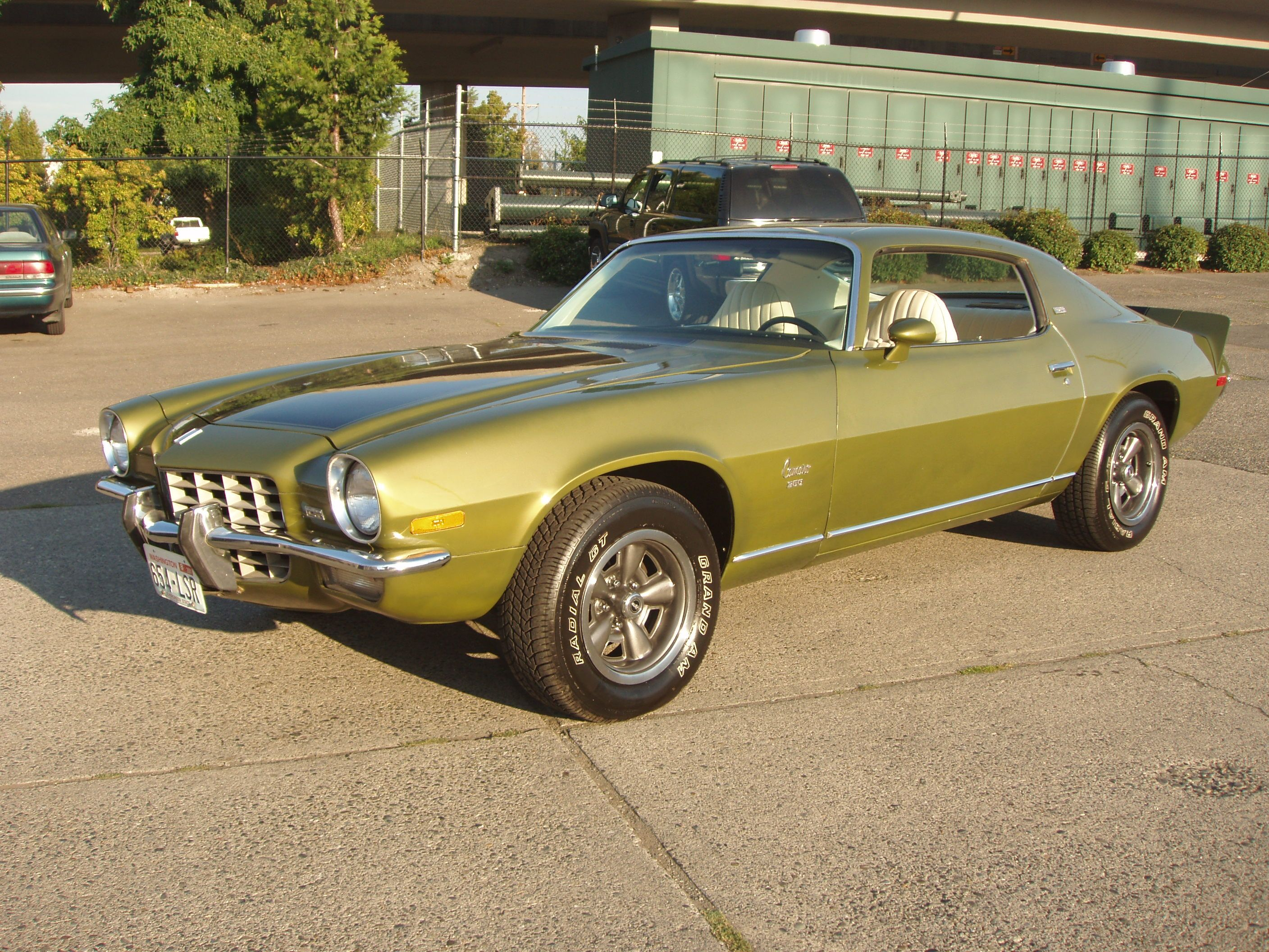 1973 Camaro Type Lt Green Gold Custom Camaro Hot Rods Cars Muscle Camaro
