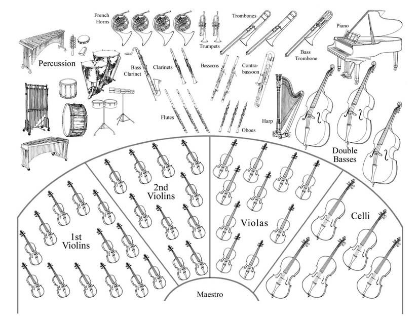 instruments of the orchestra colouring page musical instruments