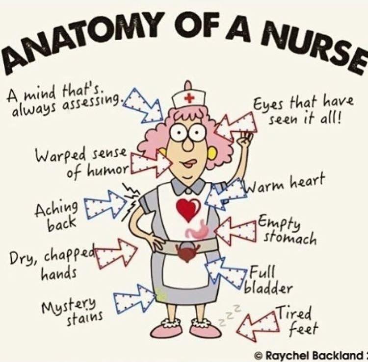 Pin by Carol Biggs on nurse Nurse humor, Humor, Nurse