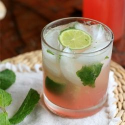 Cocktails Cocktails Cocktails ... Rhubarb and Ginger Mojito