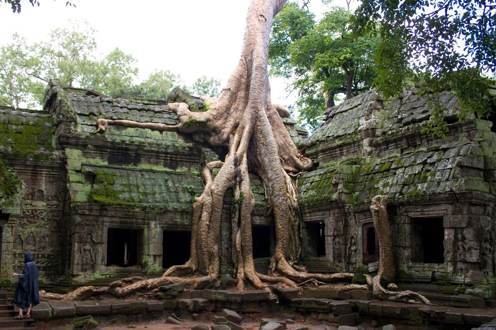 Whisk Me Away...: Angkor Wat