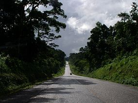 The Mabira Forest Is A Rainforest Area Covering About 300 Square Kilometres 120 Sq Mi  Acres In Uganda Located In Buikwe