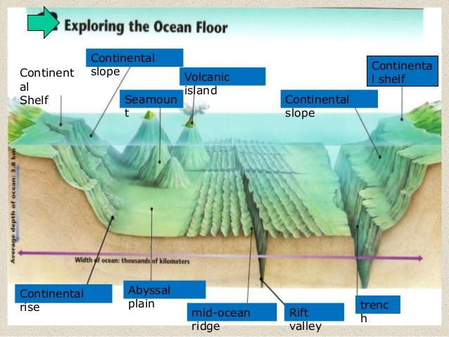 Volcanic Island Of The Ocean Floor Diagram Trusted Wiring Diagram