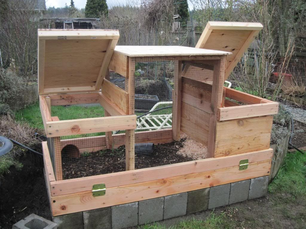 The New Quail Coop is Finished | Out of Eden | Quail coop ...