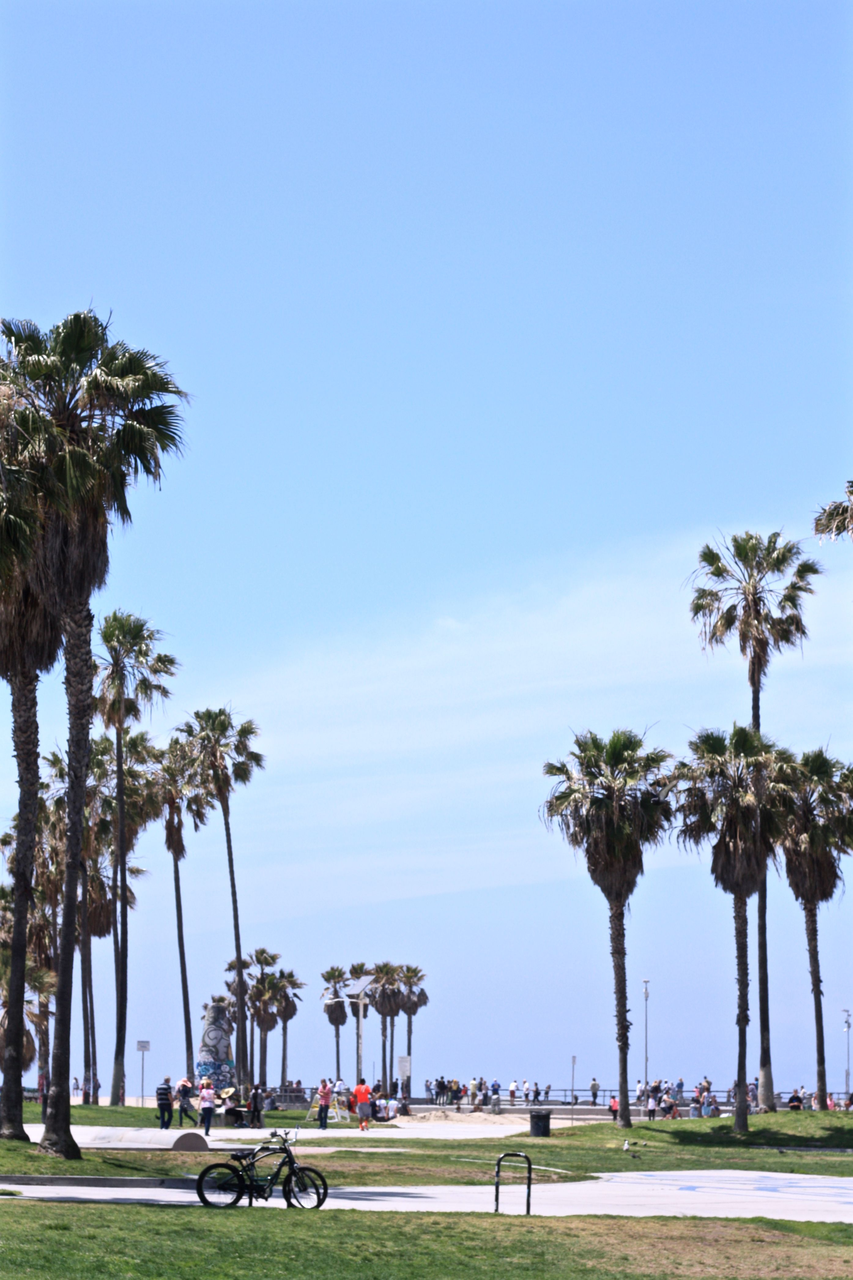 Venice Beach, California, CA, USA