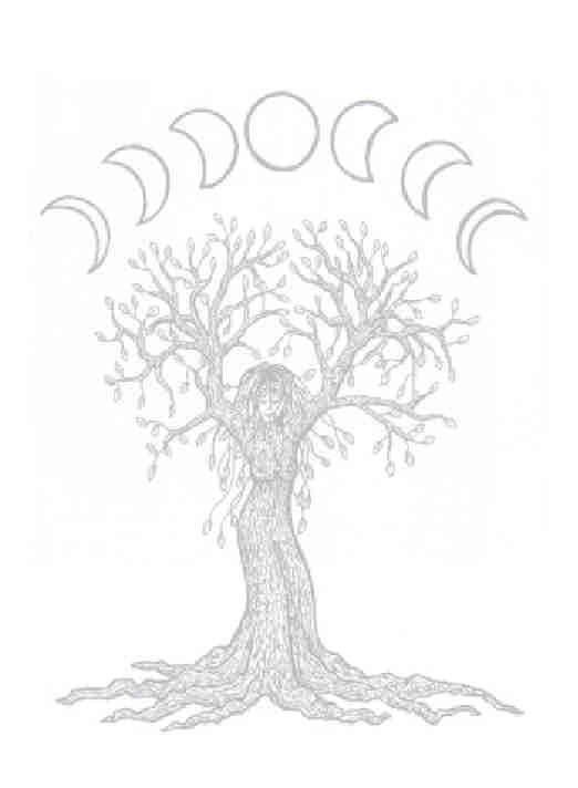 moon phases  book of shadows book of shadow pagan art