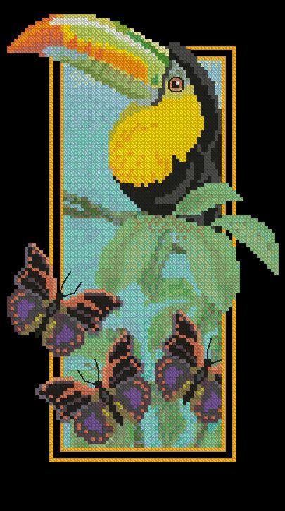 Rainforest-Toucan