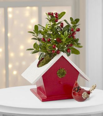 FTD Florist - Nation Wide Shopping SEND TO FAMILY- FRIENDS- CO