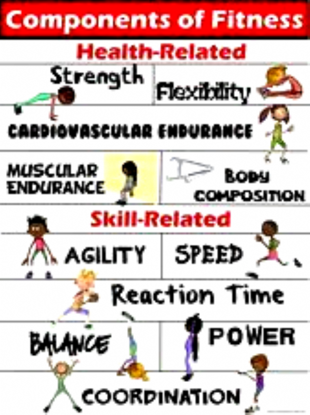 #Components #Fitness #Health #poster #SkillRelated PE Poster: Components of Fitness- Health and Skil...