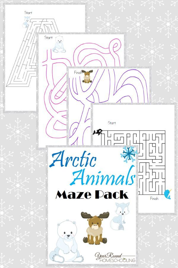 Arctic Animals Maze Pack FREE Homeschool Printables Pinterest