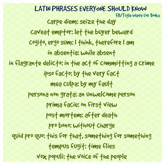 Latin Phrases Everyone Should Know Latin Quotes Latin