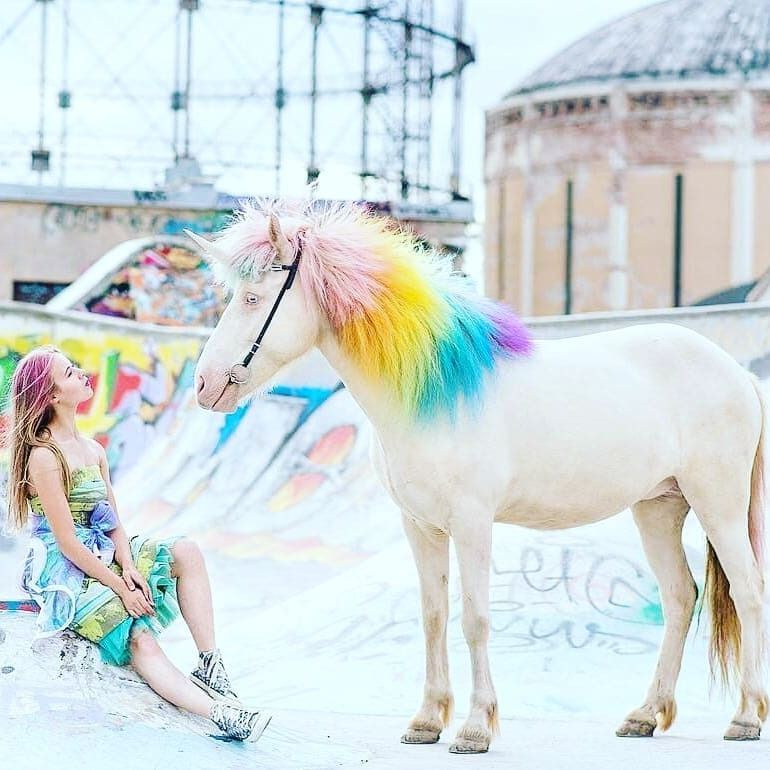 A Real Life Rainbow Unicorn Follow Myunicornplanet For More