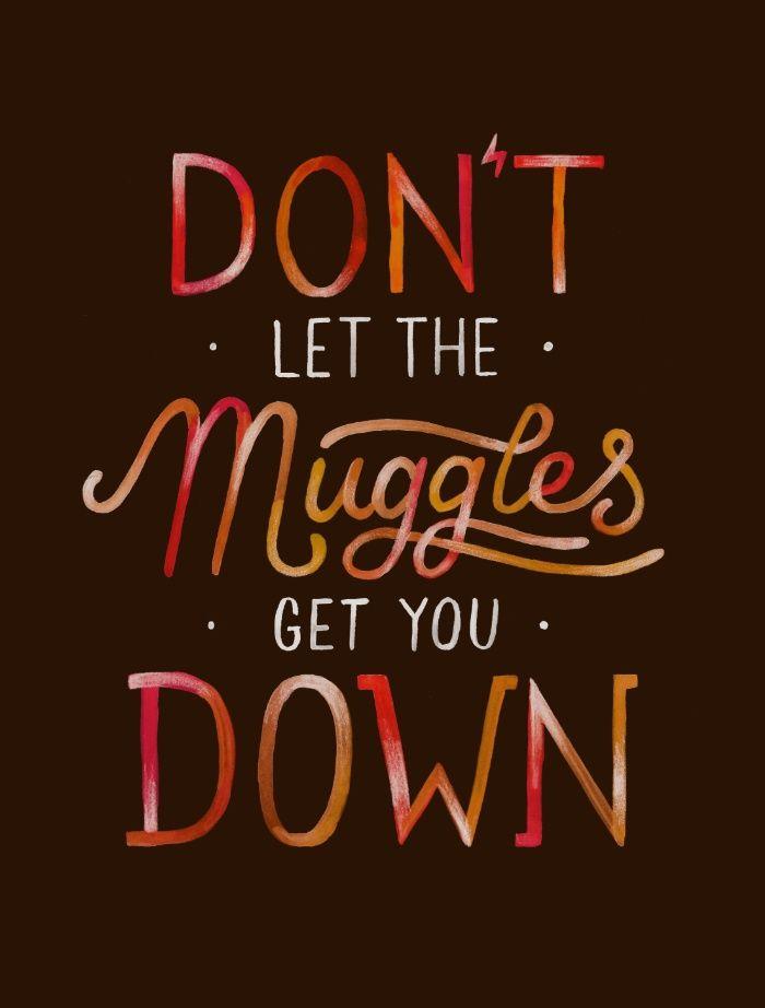 Bildergebnis für harry potter quotes don't let the muggles