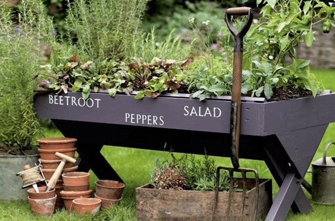 Diy Trend Kruidentuin : Maak een kruidentuin binnen met leuke kruidenplantjes