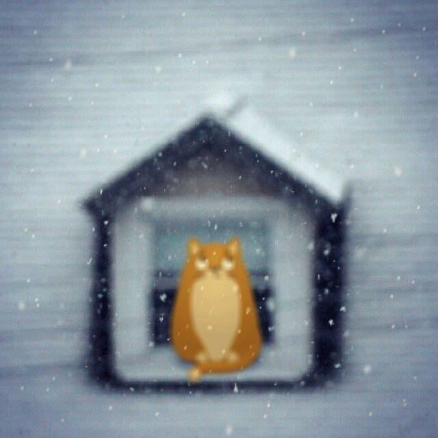 Teodor admiring the snow! <3