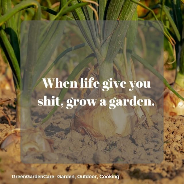 Gardening Funny Quotes Google Search Gardening Quotes Funny Garden Quotes Funny Quotes