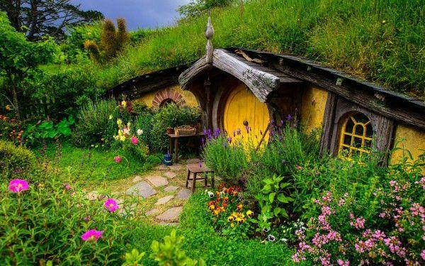New Zealand Hill Grass Flowers House Nature Hobbit House