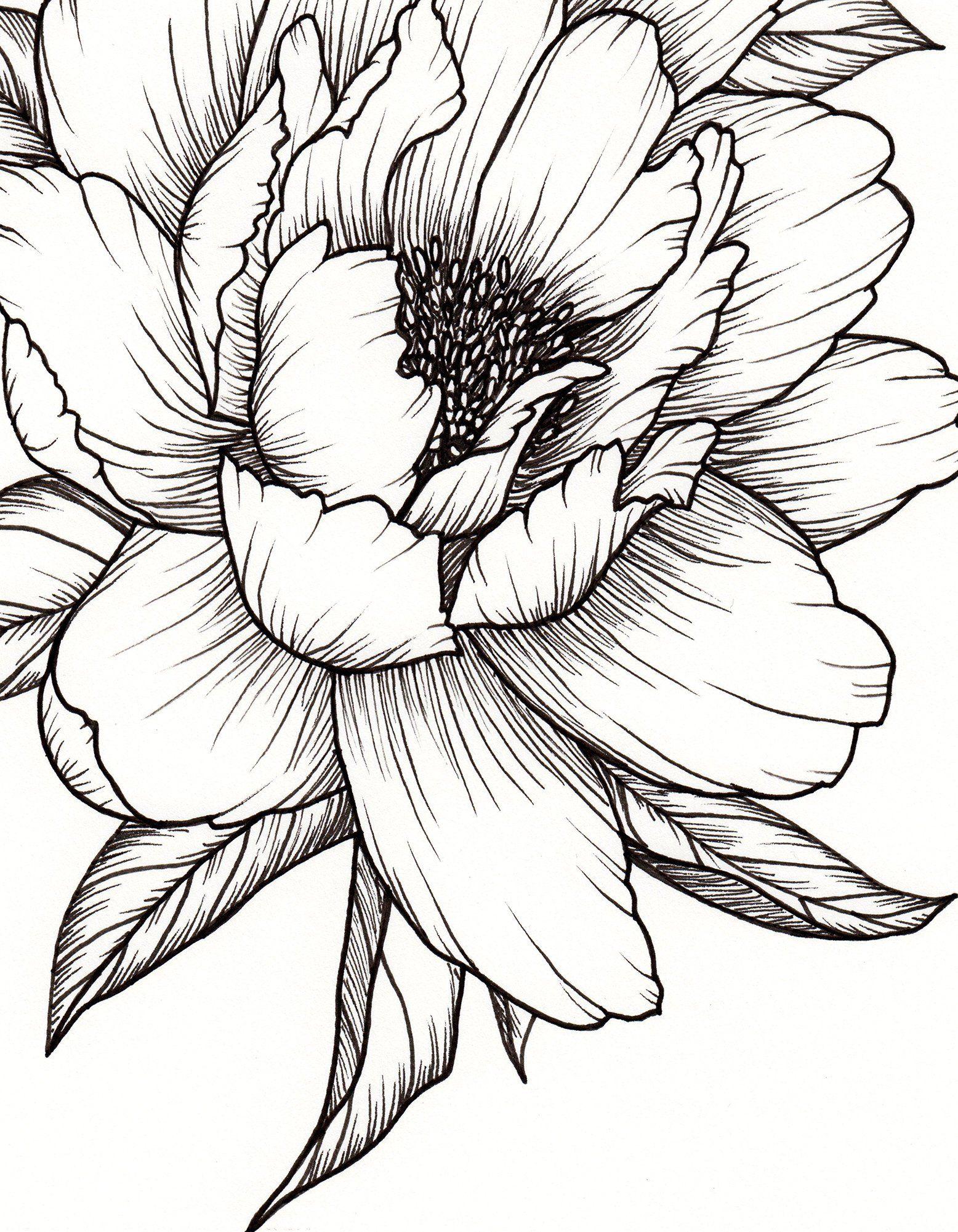 Картинки графика цветы