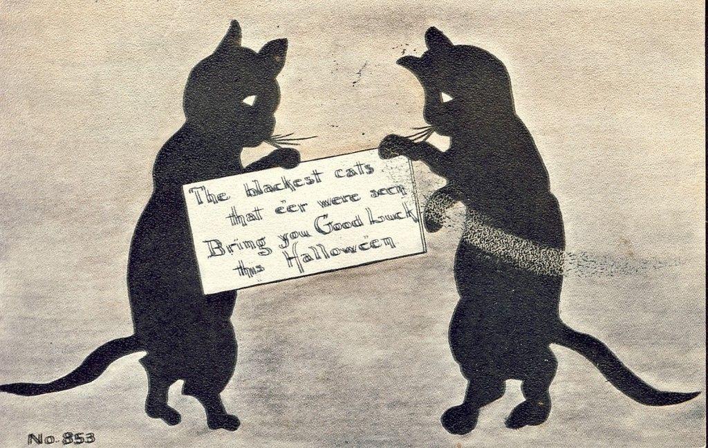 Blackest Cats Good Luck Halloween Black Cat F A Owen Postcard 1911 - halloween decorations black cat