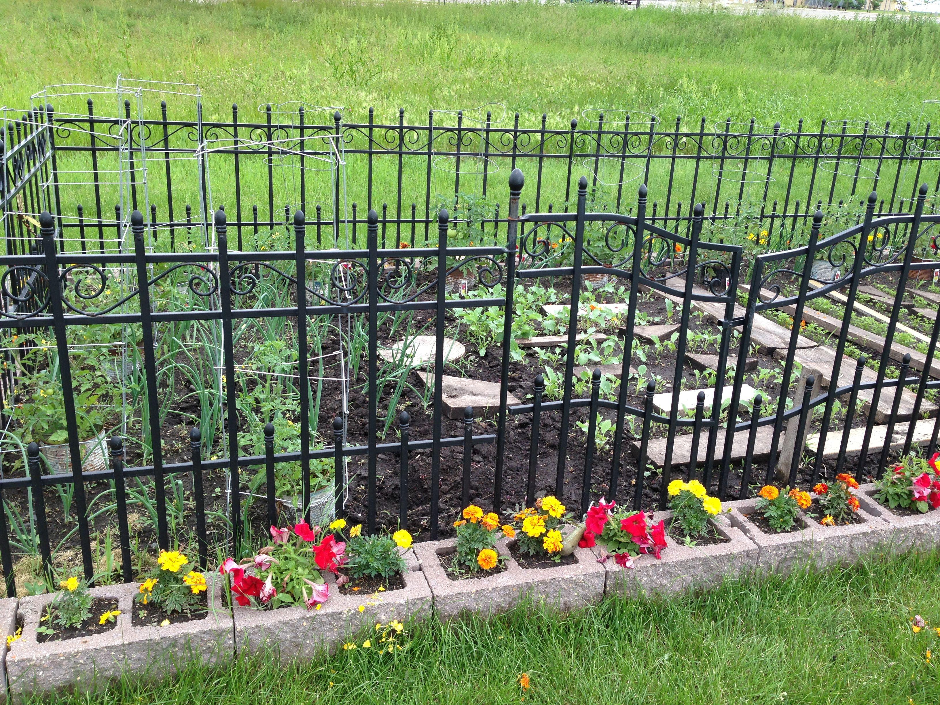 Cinder block garden Gardening Pinterest