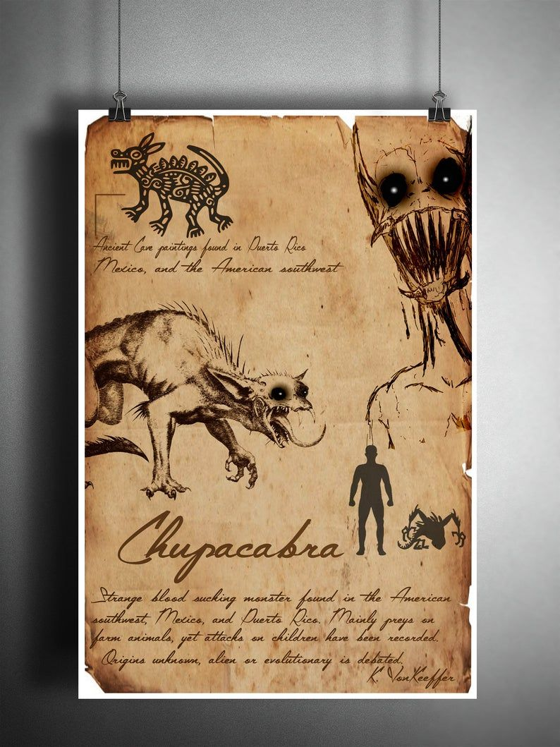 Chupacabra american folklore art sketch, cryptozoology field guide, bestiary art, cryptid art
