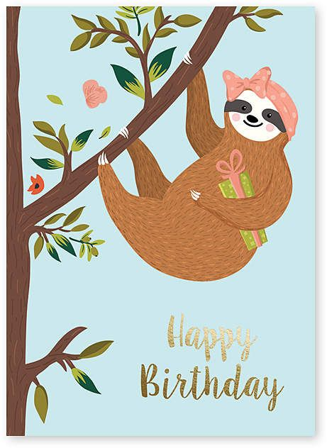 Sloth Birthday Card Set Of Six