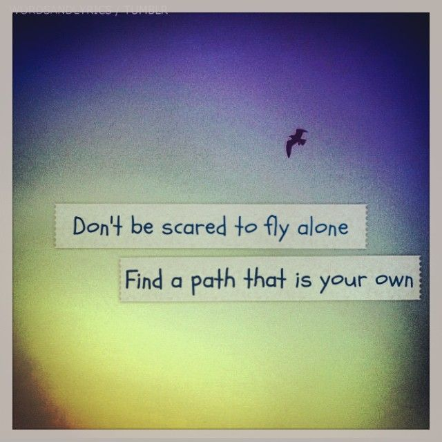 Flying Quotes Beauteous Own Path  Worthy Words  Pinterest  Flying Quotes Inspirational