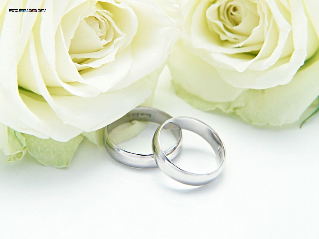 weddings | Weddings Backgrounds Pictures, Photos, Images ...