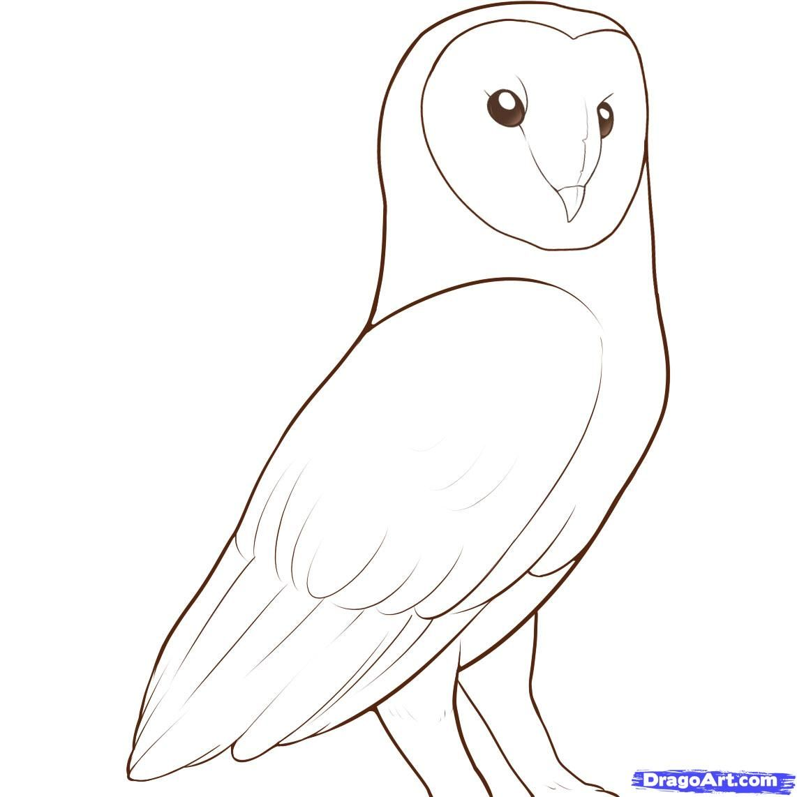for Draw an owl in two steps