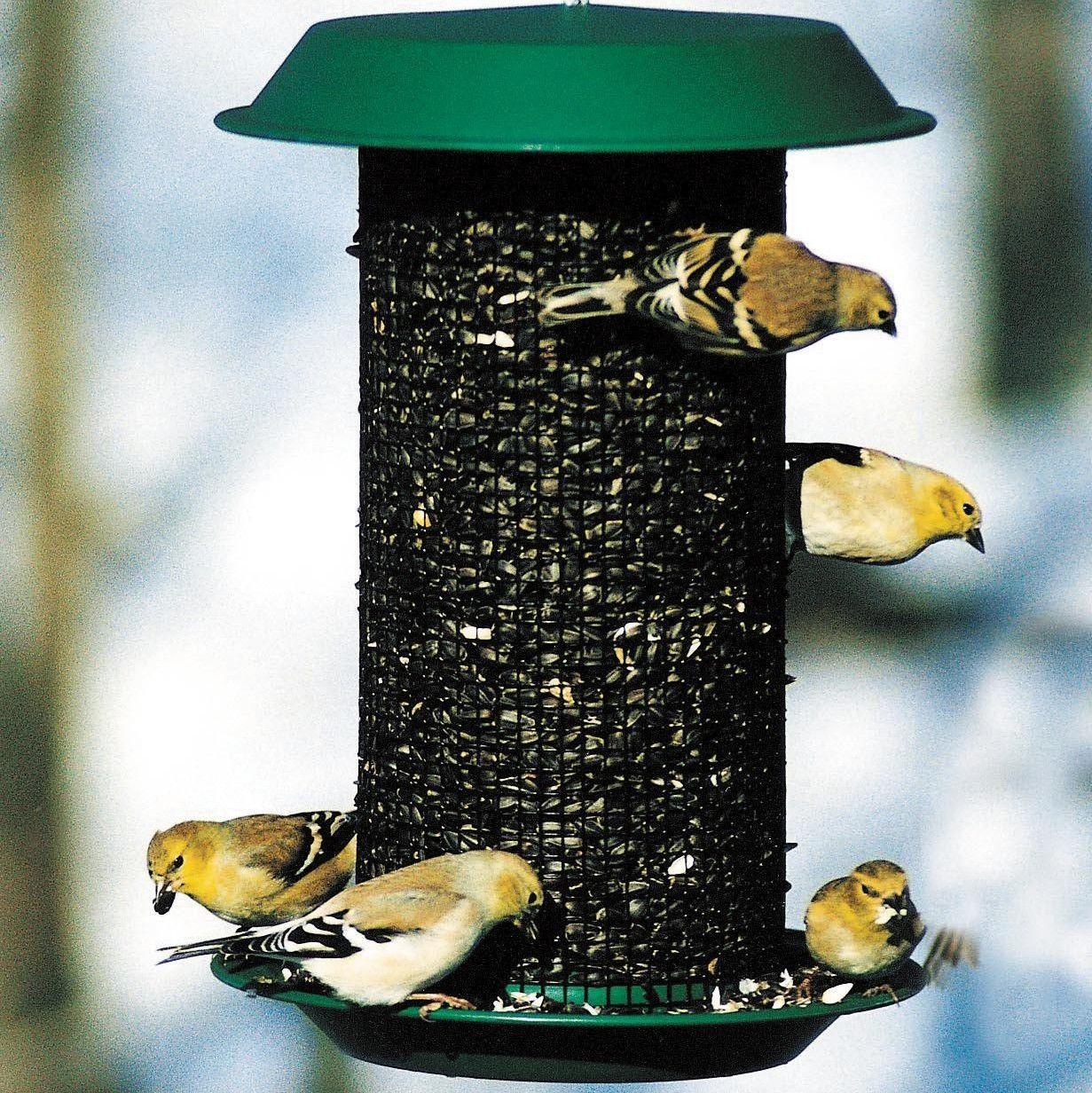 "Woodlink Nyjer Magnum Screen Thistle Bird Seed Feeder 9/"" Green"