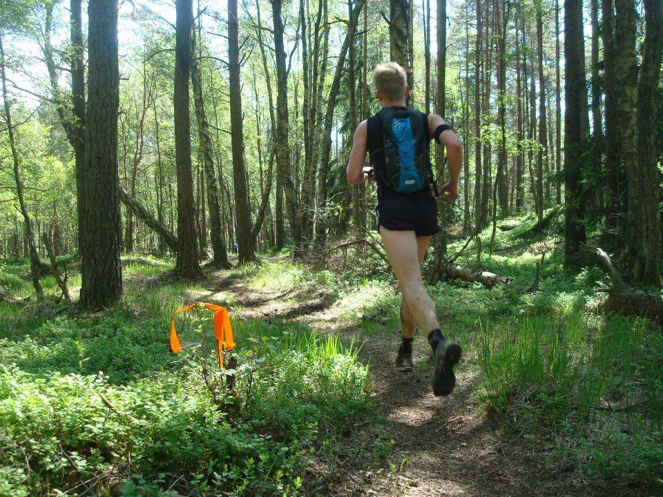 23 Best Traillöpning images | Trail running, Best trail
