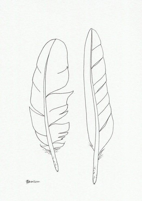 Original ink line drawing ~ 2 seabird feathers - #Drawing #feathers #Ink #line #Original #seabird